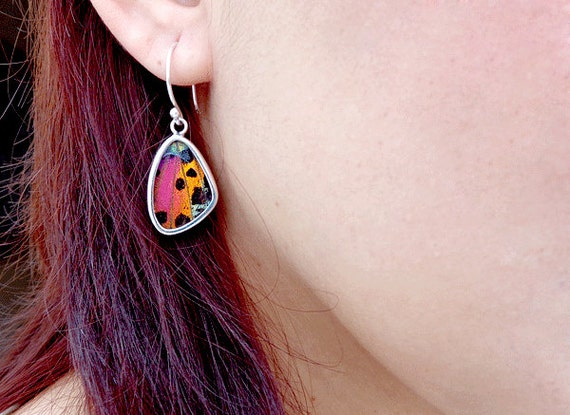 Real Butterfly Earrings - Sterling Silver Butterfly Earrings - Silver Butterfly Wing Earrings - Urania Ripheus Butterfly