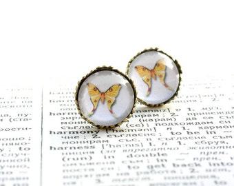 Yellow Butterfly Earings Studs, Art Noveau gift, Brass earrings  3/4 inch (16mm), Crown Earrings