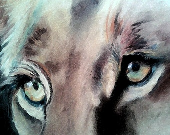 SOLD** Lioness Original 12x14 on archival paper