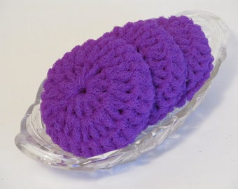 Dish Scrubbies Dark Purple Nylon Net