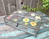 Vintage Glass Box with Pressed Flowers Large Glass Box Epsteam