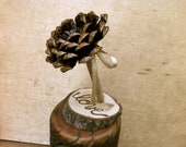 Rustic Wedding Decoration Guest Book Pen Pine Cone Wedding Fall Winter Weddings