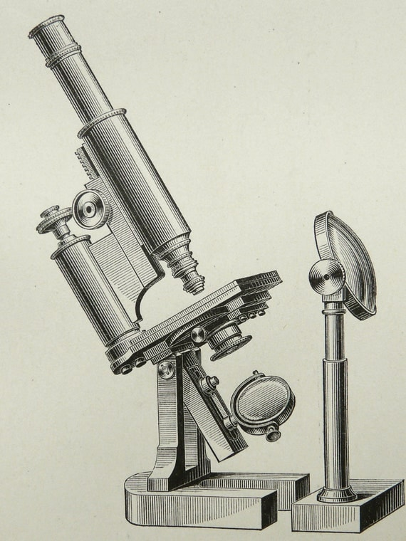 a report on the various types of microscope There are basically two types of microscopes, high power and low power  on  the left, sand, placed on a black piece of paper is best seen with a low power  microscope  40x, 100x, 400x magnification for viewing all microscope slides.