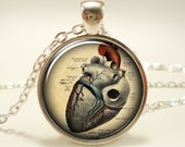 Anatomical Heart Necklace, Anatomy Jewelry (1125S1IN)