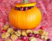 Pumpkin and Cranberry Bites All-Natural Dog Treats