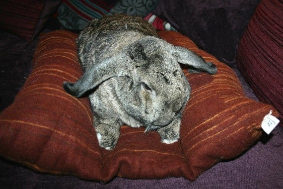 Bunny Hugger for a giant rabbit soft reddish brown and sunflower yellow wool bunny bed