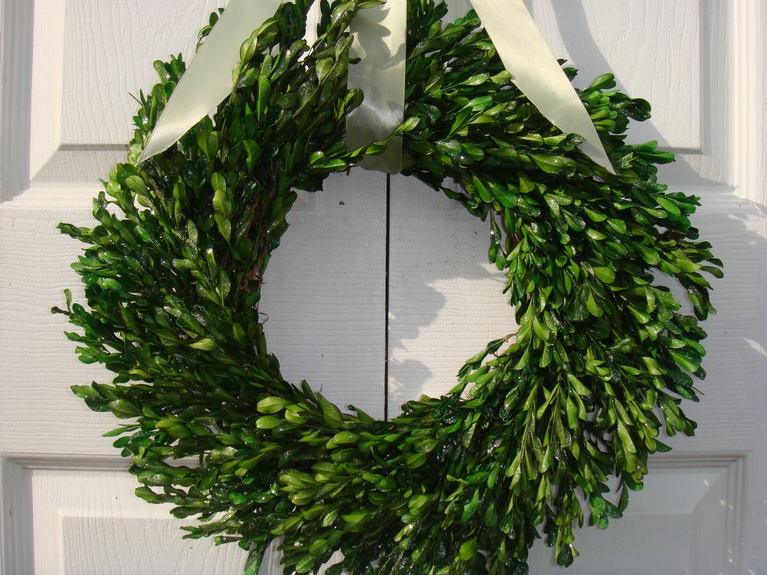 Preserved 22 Boxwood Wreath Easter Wreath Mothers Day