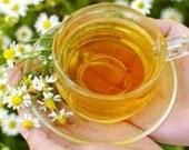 Roman Chamomile Herb Seeds, Organic Farm Grown, Perfect for Tea, Seeds, Perennial, Daisy Like Flower, 25 Seeds