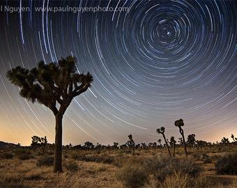 Star Trails Joshua Tree Desert photograph, 8x12 print matted on white 12x16 mat.  Star trails circle around North Star Joshua Tree