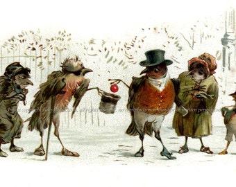 Christmas Birds Fabric - Kindly Robin Donates to Poorer Birds