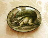 Awesome Anteater Brooch, Victorian Etching Brooch,  Oval  Brass and Glass Brooch