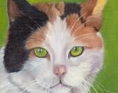 SALE Green Eyes / Cat / Animal / SFA  - An original hand painted animal oil painting by Australian Artist Janet Graham