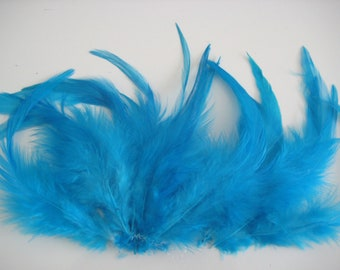 Turqoise Hen Feather Fringe / 20 loose feathers