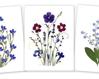 Notecards - 6 Vermont Pressed Flower Cards