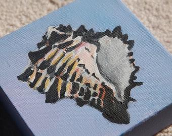 Pretty Little Murex- Original Painting 5x5