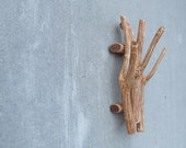 Special listing for Katie... rust branch wall hanging wooden hook rustic brown shabby chic jewelry organizer rusteam housewares key holder