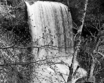 SALE - 5x7 prematted print - photograph - fine art - nature - home decor - Middle North Falls - Silver Falls State Park, OR