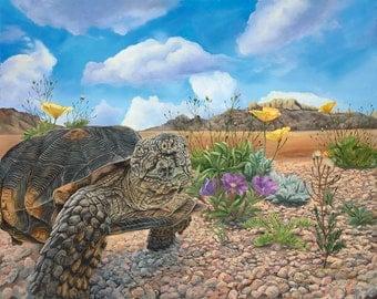 """Desert Tortoise 15"""" x 12"""" Print of Tortoise in the desert."""