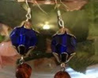 Blue and Brown  Earrings