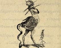 Digital Graphic Strange Mythical Bird Download Printable Image Vintage Clip Art for Transfers etc HQ 300dpi No.528