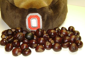 Ohio State Buckeye Nuts - Your choice, 25, 50, 75, or 100-For Necklaces,Crafts, or Floral Needs