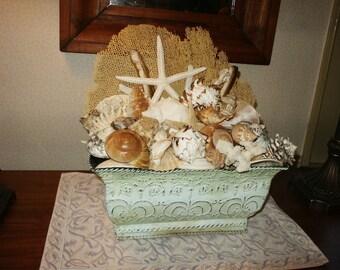 Seashell and Coral Planter Box
