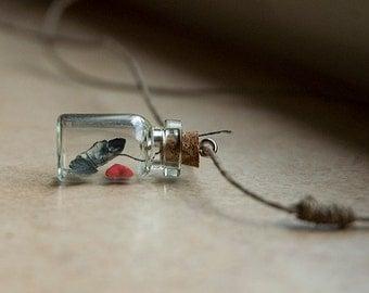 Jim Morrison Asleep in a Tiny Bottle Pendant