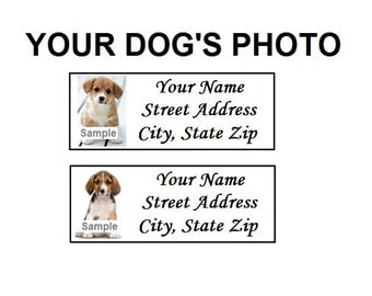 Your dog's photo / picture personalized custom stickers & return address labels