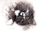 Midnight: Kitty Cat Original Watercolor Painting - ArtByJulene