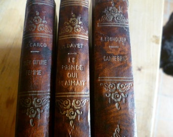 French Vintage Hardback books, Library collection