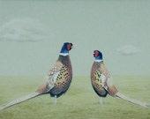 Bird Art Print, Pheasant Illustration, Limited Edition Print