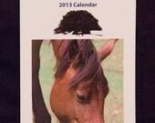 SALE - New Forest 2013 Calendar