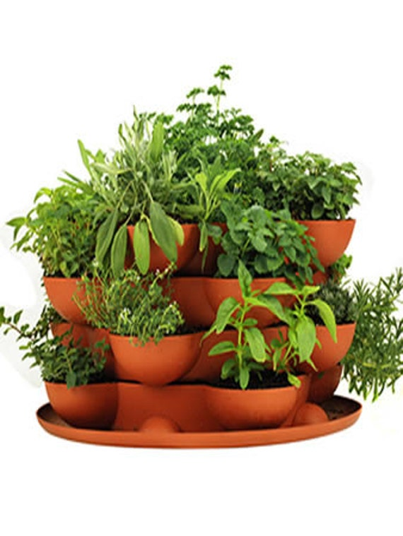 Stack Grow Planter Plus Culinary Herb Garden Starter Kit