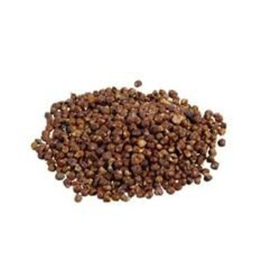 Premium Paradise Seeds For Flavoring Beers and Root Beer 1 Oz Bag