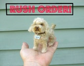 Custom Rush Order Fee for Handmade Animal Sculpture / Custom Pet Portrait / Your Pet in Miniature / Needle Felted Dog /Cat / Cute / poseable