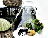 Miniature Wild Horse Terrarium: Horse Lovers Gift for Him in Tear Drop Glass Vase & Live Moss - Black Beauty