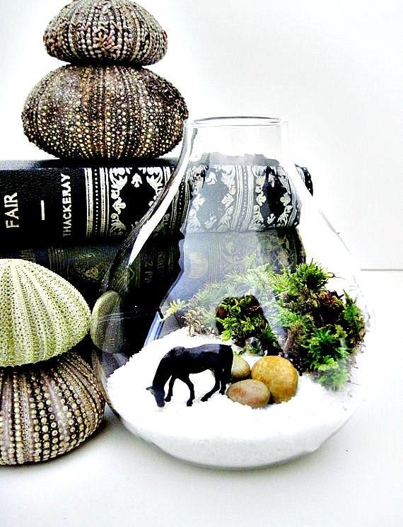Miniature Wild Horse Terrarium: Horse Lovers Gift for Him in Tear Drop Glass Vase & Live Moss - Black Beauty