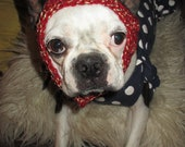 Dog Hat Red Tweed