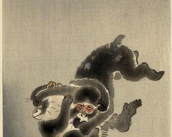 vintage woodblock print OHARA KOSON monkeys wrestling