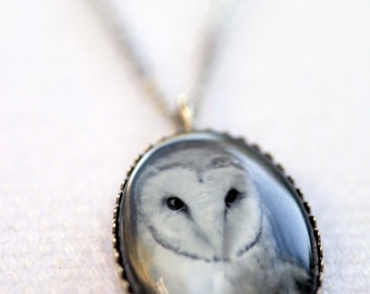 Owl necklace, Photo Pendant  - Wearable Art Jewelry - Gift for Her gift under 20