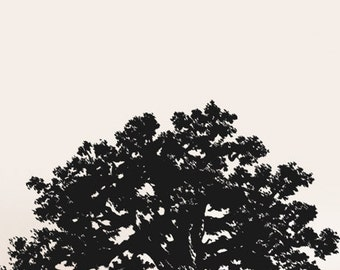 Vinyl Wall Decal Sticker Huge Oak Tree 10ft Wide X 7ft Tall item 410-10ftx7ft