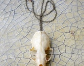 Small Animal Skull Pendant Natural Finish