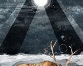 Unsleeping Dream  // Signed A4 print