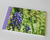 Notebook/Sketchbook/Journal - 4x6 - Texas Purple - Original Photograph
