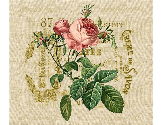 French rose instant graphic digital download image for iron on transfer to fabric burlap pillows Decoupage Paper Scrapbook Cards No. 616