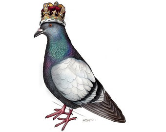 Pigeon in a Crown - A4 Print