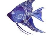 Blue AngelFish Archival Art Print