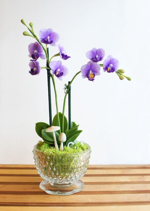 Faux Mini Purple Moth Orchid Flower Arrangement in Vintage