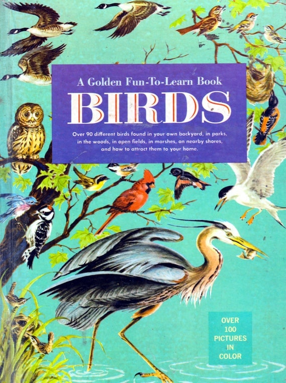 A Golden Fun-To-Learn Book: Birds