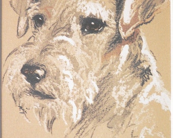WIRE HAIRED TERRIER Vintage mounted 1939 Lucy Dawson Asta (Skippy) dog plate print Unique Christmas Thanksgiving Birthday Congrats gift